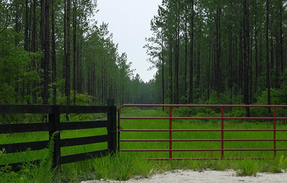 Land for sale in Bradford County, Florida