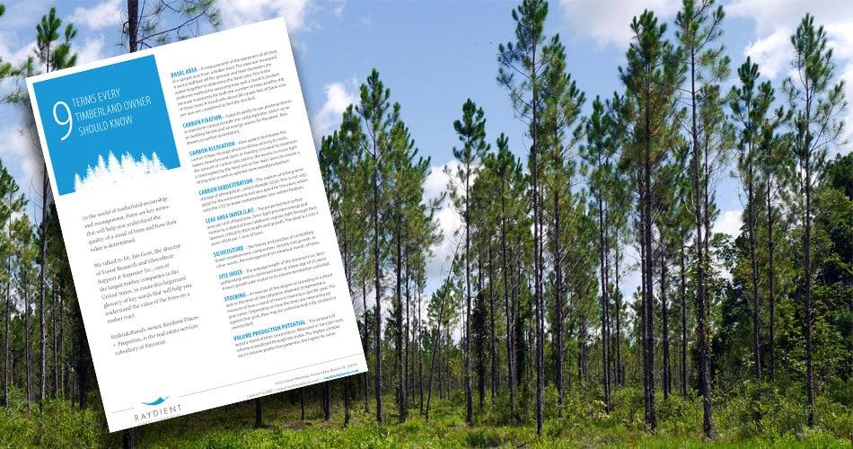 ForestryTermsCTA.jpg