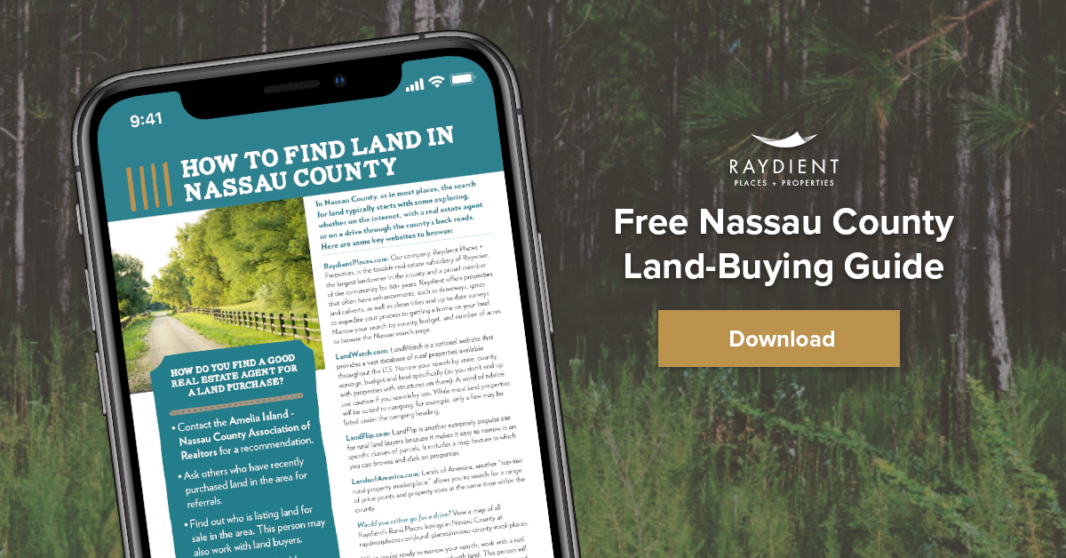 Free Guide: How to Buy Land in Nassau County